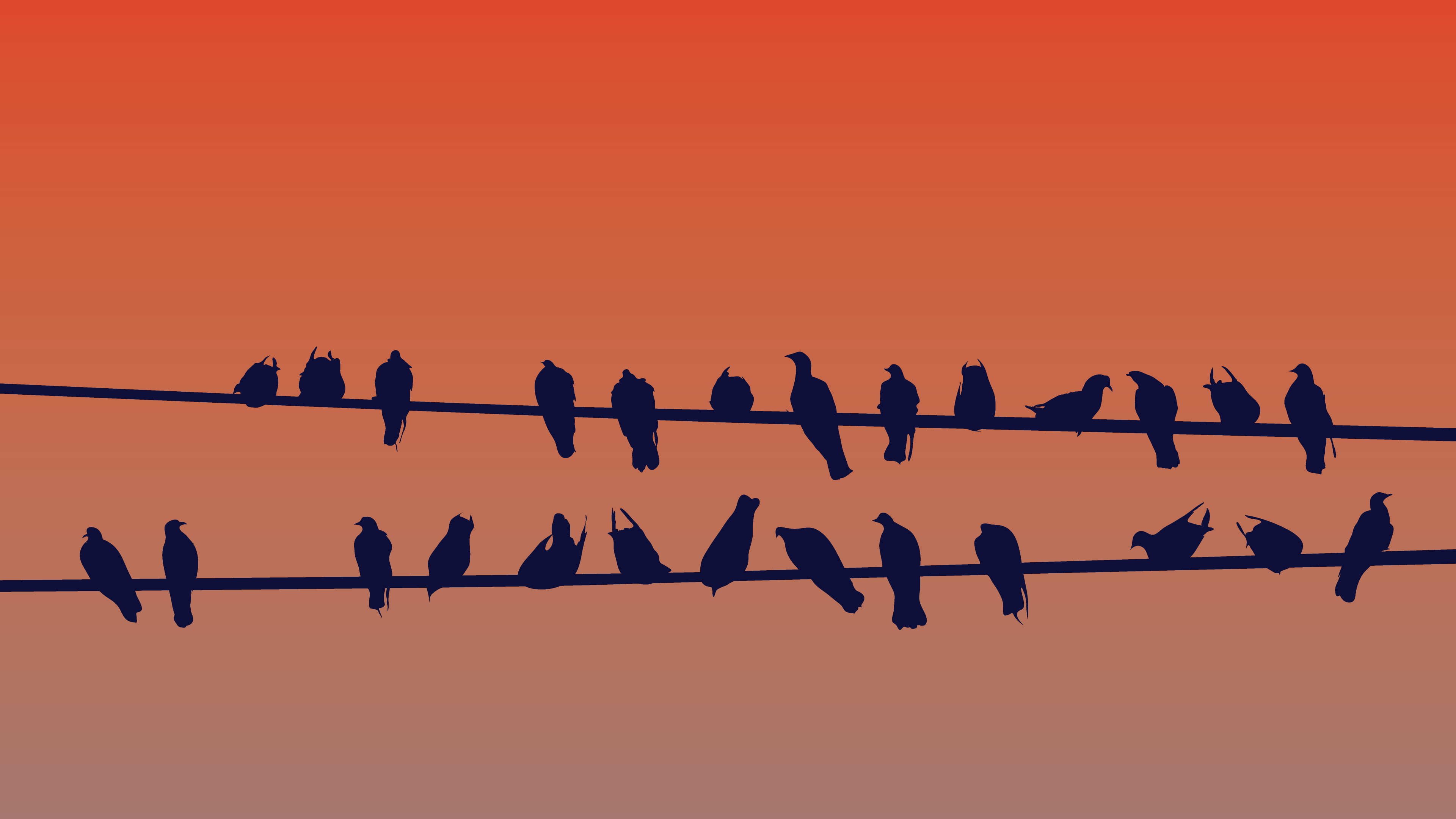 Must see Wallpaper Bird Minimalist - birds-of-a-feather  Picture_712822.jpg