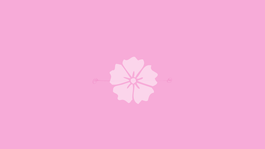 Cherry blossom minimal simple minimalist desktop wallpaper
